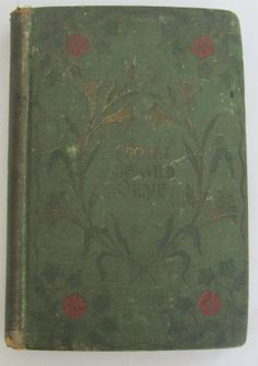 Antiquarian Book 1st Edition Crown of Wild by BookPaperScissor, $42.00