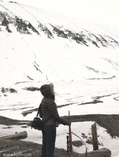 svalbard travel rifle lisence protection photographing norway #svalbard #weapons #protection #landscape #polarbear #licence #rifle #scandinavia #Norway #norwegiannature #longyearbyen