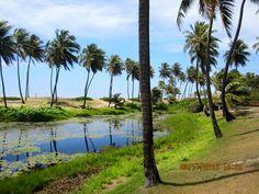 Sauipe Resorts, Costa do Sauípe, Bahia