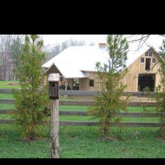 Bird house and barns