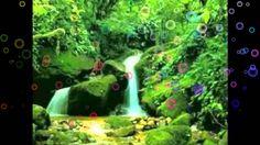 PARNARAMA IS THE PARADISE 3 / REGGAE