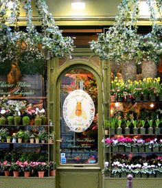 Flower Shop in Paris. Hanging Ivy Baskets could be used as outdoor chandelier...