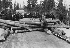 Veisperring. April 1940. Ww2, World War, Norway, In This Moment, Modern, History, Trendy Tree