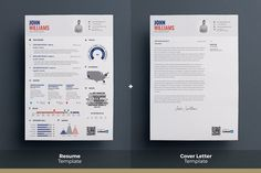 Infographic Resume - Psd Indd