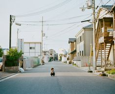 濱田英明不僅告訴我們,美其實是在簡單的生活中被發現,他也提醒我們,這些都是回憶,將持續一生。  官方網站:http://hal.petit.cc