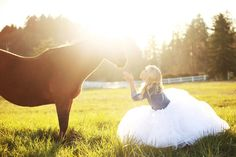 Link to examples of gorgeous gorgeous photography lighting and poses with horses