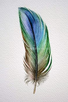 Blue-Green Parrotlet Feather study Original by jodyvanB on Etsy Watercolor Feather, Feather Painting, Feather Art, Feather Tattoos, Watercolor Cards, Watercolor Paintings, Blue Feather, Art Tattoos, Black Feather Meaning