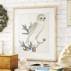 Owl Framed Print Add A Woodland Touch To Your Walls With This Avian