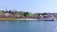Nami Island on April 21st near Chuncheon City South Korea.