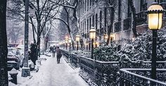 WINTER IN NYC!!⛄️❄️                    Absolutely Everything We're Doing in NYC This Winter via @PureWow