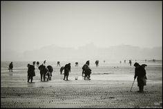 2004, novembre | Cesenatico, bassa marea 3