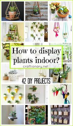These Creative Indoor Plant Displays are a guide to help you enjoy your winters…