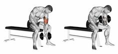 Illustration: Concentrated bending arms with a dumbbell. Exercising for bodybuilding. Target muscles are marked in red. Initial and final steps. 3D illustration