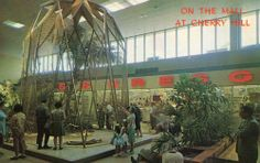 CHERRY HILL NJ CHERRY HILL SHOPPING CENTER THE MALL AVIARY  HARD2FIND POSTCARD