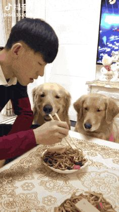 21 Best GIFs Of All Time Of The Week #222