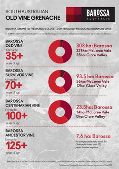 Barossa: the proud home to the highest proportion of old Grenache vines in Australia. possibly the world. Clare Valley, Infographics, Wines, Australia, World, Info Graphics, Infographic, Peace, The World
