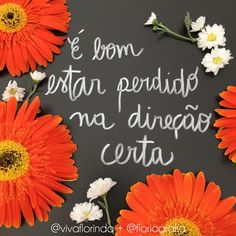 É bom estar perdido na direção certa @vivaflorinda + @floriografia