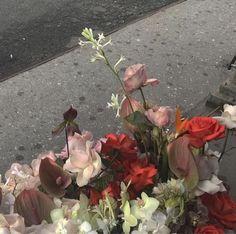 No Regrets: Photo Flowers Nature, My Flower, Fresh Flowers, Beautiful Flowers, Wild Flowers, Ranunculus Flowers, Gardenias, Nature Aesthetic, Flower Aesthetic
