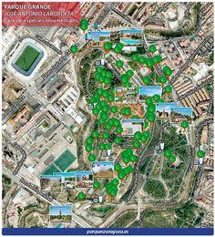 Infografía de especies ornamentales del Parque Grande Labordeta.
