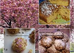 dolci e dolcetti(cakes and sweets, ideas: coffee cake, desert roses, chocolate pralines)