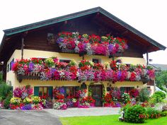flowers at home st.martin lofer - Beautiful home Photos presented by the Salzburger Nachrichten