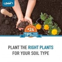 Plant the right plants for your soil type