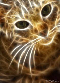 lightning cat http://www.modelmayhem.com/447050