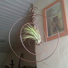 mobile ⚓ mobile tillandsia ⚓ suspension végétale ⚓ décoration végétale ⚓ : Accessoires de maison par lartisane