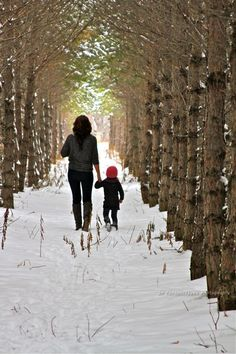 family photo, photography, Winter, woods, walk, Mother, mom, daughter, toddler, girl, beautiful, outside, country, different, trees, spruce, snow, holding hands, nature, scenery