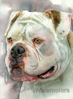 Bear With Me is an Open Edition Giclee Art Print from a watercolor featuring an American Bulldog named Bear. Bear is an American Bulldog who does Watercolor Animals, Watercolor Paintings, Watercolor Trees, Watercolor Landscape, Abstract Paintings, Watercolour, Animal Paintings, Animal Drawings, Indian Paintings