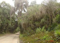 Parque Itapuã