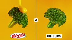 Great Ads, Velveeta, Parsley, Herbs, Food, Essen, Herb, Meals, Yemek