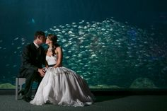 Two less fish in the sea. #love. Image: Carrie Wildes Photography