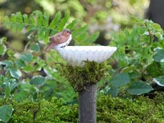 Miniature Fairy Garden  Birdbath with brown by TheLittleHedgerow, $8.95