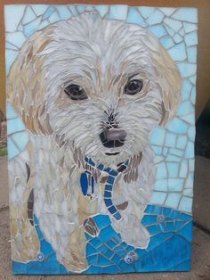 All glass and Milli approx. Pebble Mosaic, Mosaic Art, Mosaic Glass, Glass Art, Stained Glass, Pet Dogs, Dog Cat, Bichon Dog, Mosaic Animals