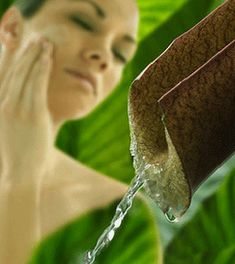 Yzyw 130g Lemon Handmade Soap Whitening Soap Bath Shower Soap Body Skin Health Care Cleanning Beauty Life Fragrance Soap Gift Soap Bath & Shower
