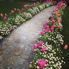 Best Side Yard Landscaping Ideas For Garden Decor & Design . - Best Side Yard Landscaping Ideas For Garden Decor & Design - Front Yard Walkway, Small Front Yard Landscaping, Front Yard Design, Backyard Landscaping, Landscaping Borders, Front Porch, Pergola Garden, Simple Landscaping Ideas, Azaleas Landscaping