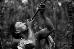 Ciro Guerra's film explores the devastation of the Amazon jungle through two historical journeys and the viewpoint of a fictional tribal shaman.