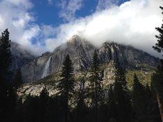 Life, Beauty, Scene, Yosemite