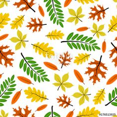 autumn, leaves, pattern, leaf, background, fall, vector, seamless, maple, illustration, season, design, orange, nature, yellow, texture, plant, foliage, red, white, decoration, oak, wallpaper, abstract, element, colorful, color, september, forest, seasonal, october, tree, watercolor, natural, decorative, graphic, november, isolated, brown, textile, decor, green, silhouette, art, bright, ornament, repeat, paper, set, garden