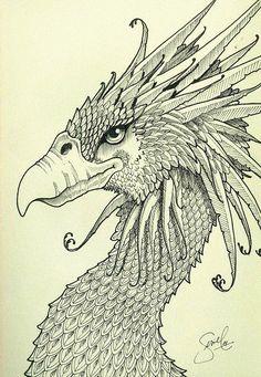 °Fantasy Bird by gesielmachado Pencil Drawing Images, Cute Animal Drawings, Magical Creatures, Fantasy Creatures, Illustrations, Illustration Art, Phoenix Images, Bird Sketch, Drawing Studies