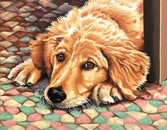 ADORABLE ~ paint by number