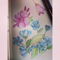 Floral 2 by Daniele Silva, via Behance