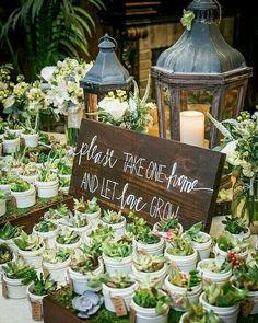 Herkes nikah şekeri dağıtır. Siz nikahınızda bu minik sukulentleri dağıtmak istemez misiniz? . . . .  #wedding #engagement #weddingorganization #düğün #düğünorganizasyonu #düğünhazırlıkları #fotoğraf #photography #fotoğrafköşesi #photobooth #natural #flower #background #arkaplan #decor #decoration #weddingdecoration #chic #simple #diy #crafts Wedding Favours, Wedding Ceremony, Wedding Day, Wedding Quotes, Garden Wedding, Diy Wedding, Wedding Receptions, Wedding Bouquet, Wedding Gifts