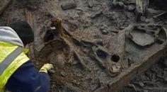 Descubren poblado de la Edad de Bronce en el Reino Unido                                                                                                                                                     Más