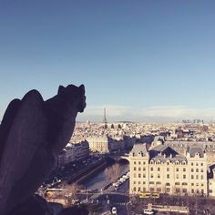 Watching over Paris from he Notre Dame