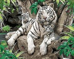 [ Wooden Framed or not ] [ New Release ] Diy Oil Painting by Numbers, Paint by Number Kits - White Tiger and Her Kids 16*20 inches - Digital Oil Painting Canvas Wall Art Artwork Landscape Paintings for Home Living Room Office Picture Decor Decorations Gifts - Diy Paint by Numbers Diy Canvas Kit for Adults Advanced Children Seniors Junior - New Arrival