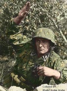 "Grenadier of the 9th SS Panzer Division ""Hohenstaufen"""