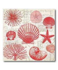 Red Shells II Canvas #zulily #zulilyfinds. Need to find these in blues.