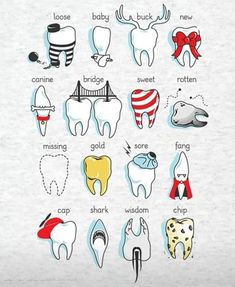 Image result for teeth puns